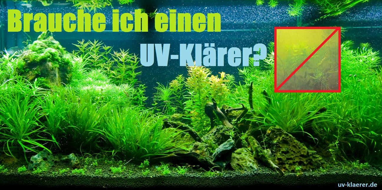 UV-Klärer gegen Algen im Aquarium grünes Wasser, trübes Wasser, Schwebealgen, Algenbluete, Bakterienbluete, UVC Innenfilter, UVC Aussenfilter, UVC Wasserklaerer