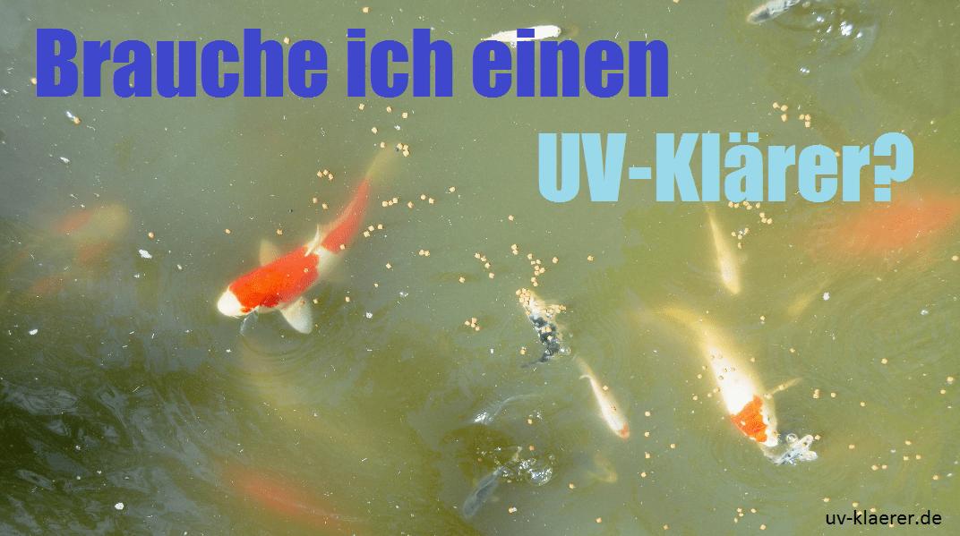Teich Koi Schwebealgen grünes Wasser uv-klaerer.de UVC Teichfilter Druckfilter Durchlauffilter