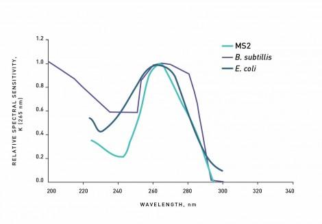 Spezifische Absorptionsspektren von Mikroorganismen im UV Bereich