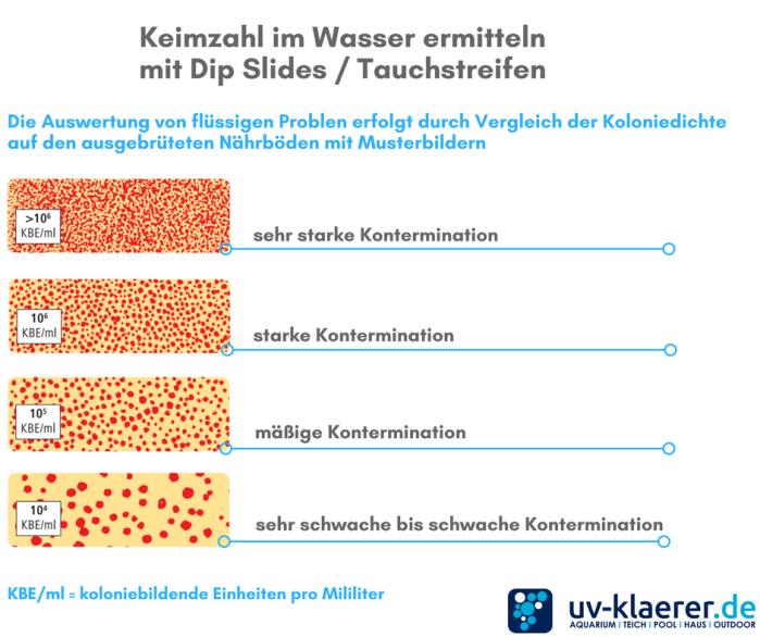 Tauchstreifen Dip Slides mit Musterbildern vergleichen und auswerten und Keimanzahl im Wasser ermitteln