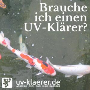 UVC Klärer im Koiteich