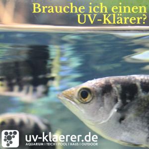 UVC Klärer im Süsswasseraquarium