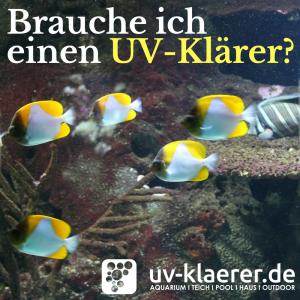 UVC Lampe im Meerwasseraquarium