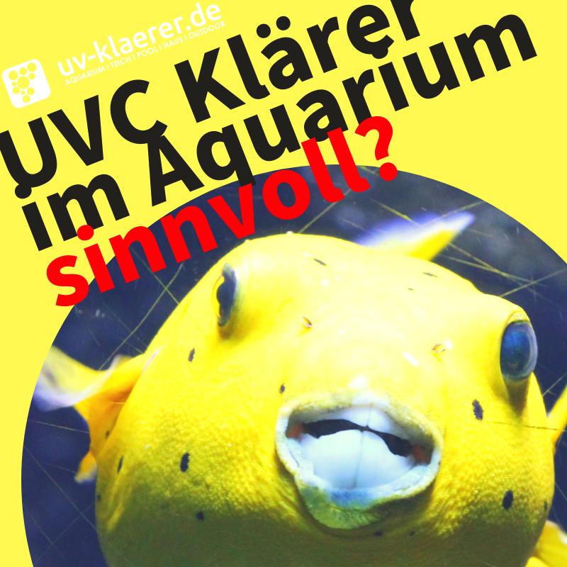 UVC Klärer im Aquarium sinnvoll?